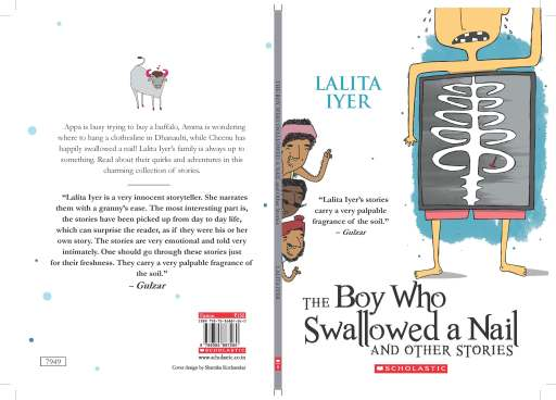 The Boy Who Swallowed a Nail and Other Stories Cover AGN.new_Page_1